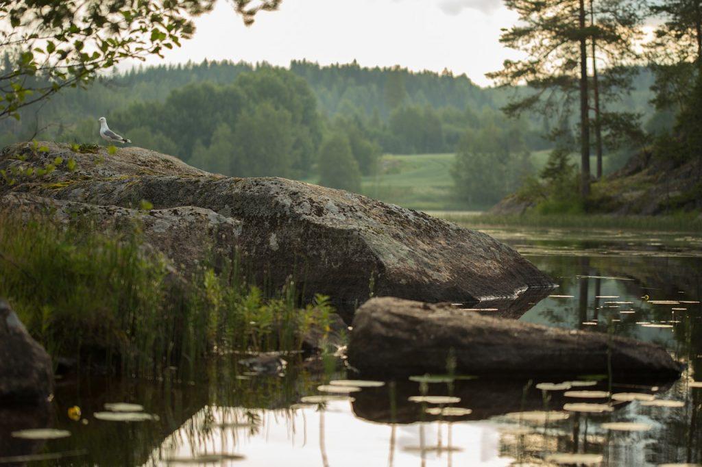 lake-583873_1280